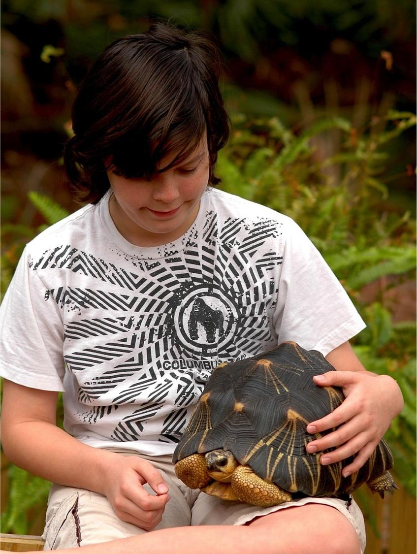 Freshman River Grace's research on radiated tortoises has earned him a trip to Washington D.C.