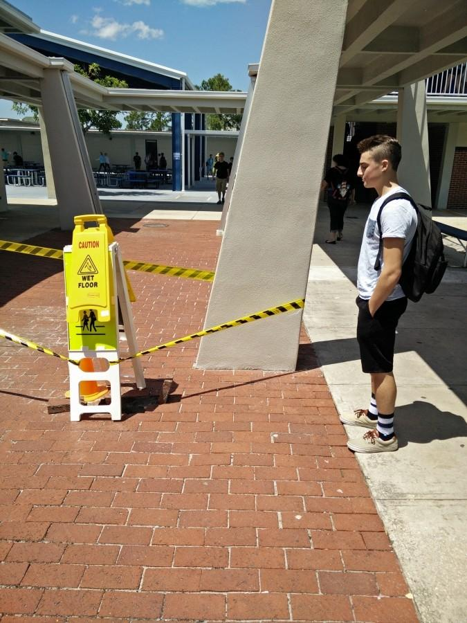 Ayden Lew stares at sinkhole.