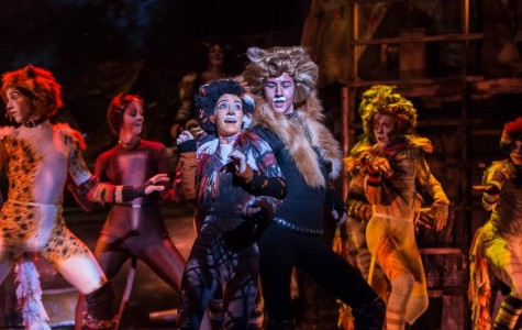 Production gives junior 'catt-itude'