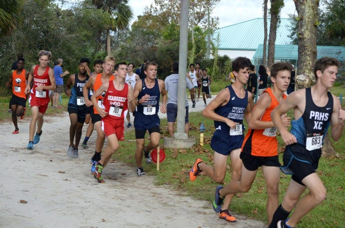 Sophomore+Christopher+Johnson+and+senior+Adam+Blackwell+run+at+the+Shark+Classic+Cross+Country+Meet.