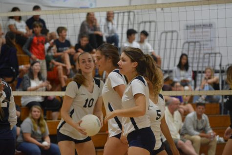 Lady 'Cats volleyball star returns