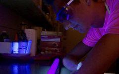 Ultraviolet Understandings