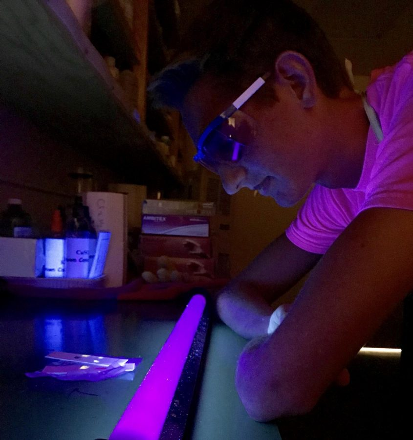 Ultraviolet+Understandings