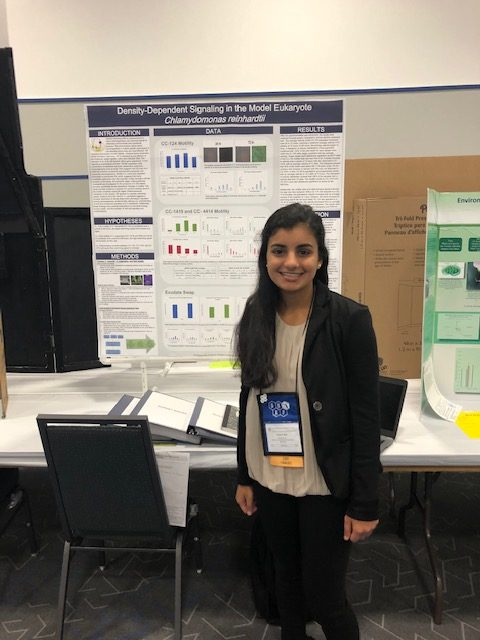 Pooja Shah waiting to present at the State Science Fair.