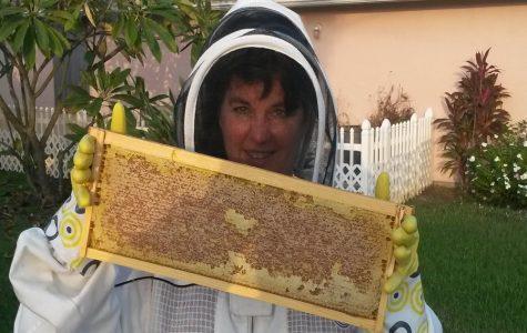 Teacher's hobby proves to be sweet as honey