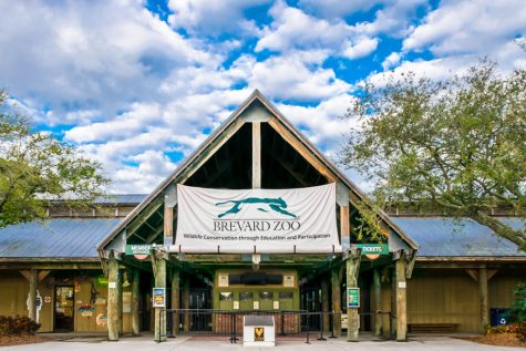 The Brevard Zoo gets most of its funding from people visiting the facility.