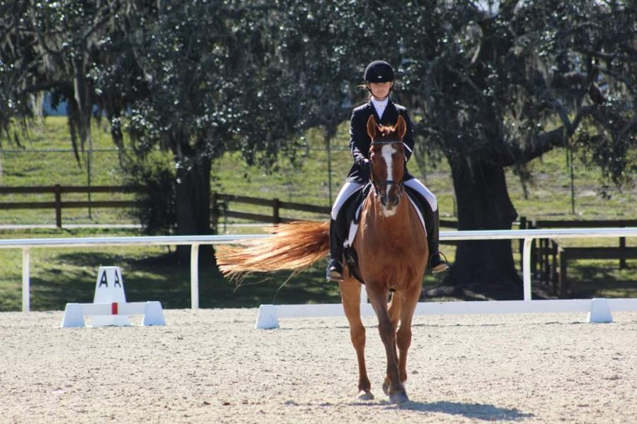 Eighth-grader Bella Ruohomaki competes at the Vero Beach Equestrian Club Horse Show in October.