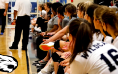 Sideline sports volleyball: Girls fall in semifinals